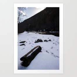 Log on the Pecos Art Print