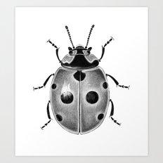 Beetle 03 Art Print
