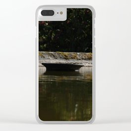 Water chemistry Clear iPhone Case