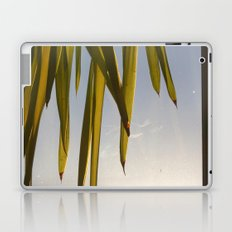 November evening Laptop & iPad Skin