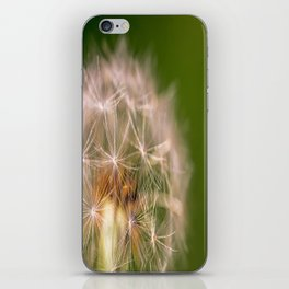 Snowglobe - Macro Photograph of Dandelion iPhone Skin