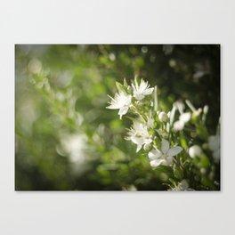 Bright Day, Tiny Flower Canvas Print