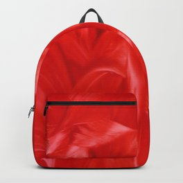 Bes Red Backpack
