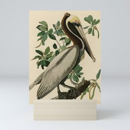 Brown Pelican, Birds of America by John James Audubon Mini Art Print