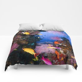 Tropical Fish Great Barrier Reef Coral Sea Comforters