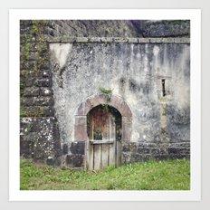 Doors of Perception 1 Art Print