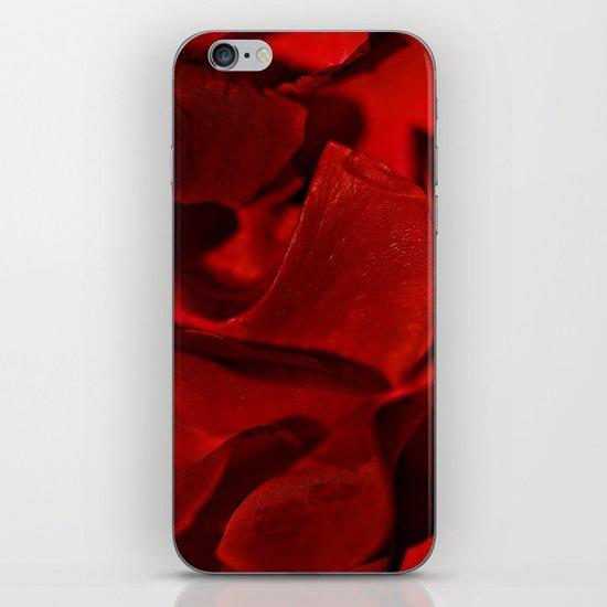 Red rose close up iPhone & iPod Skin