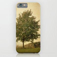 Autumn Breeze iPhone 6s Slim Case