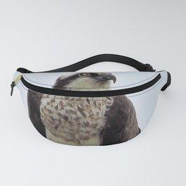 Osprey Fanny Pack