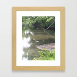 Heron Framed Art Print