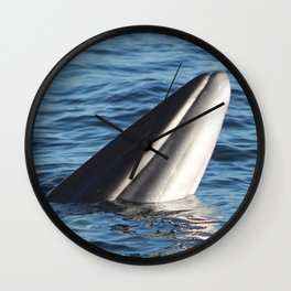 Minke Whale Wall Clock