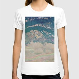 Walk in the park T-shirt