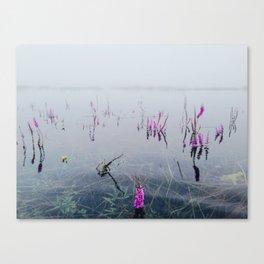 Wet flowers Canvas Print
