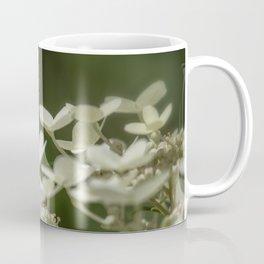 Butterfly on a Hydrangea Coffee Mug