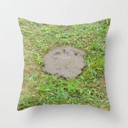 Watercolor Poop, Bear 02, Cape Breton, Nova Scotia, Canada, Sad and Flat Throw Pillow