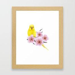 Yellow Budgerigar Framed Art Print