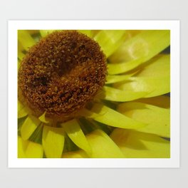 Yellow Spikes Art Print