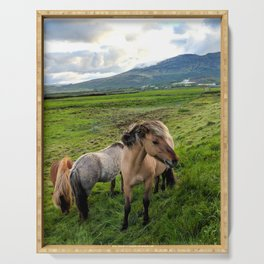 Icelandic Horses Serving Tray