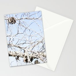 Nature - Tree Branch Stationery Cards