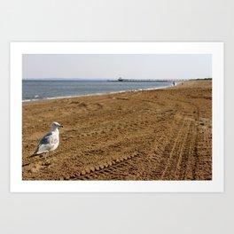 Staten Island Seagull Art Print