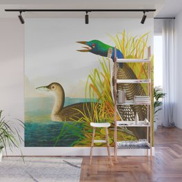 Great Norther Diver or Loon John James Audubon Scientific Birds Of America Illustration Wall Mural