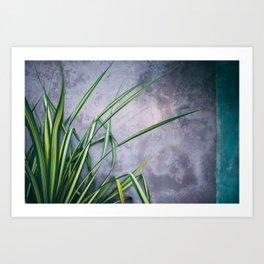 Palm Palette Art Print