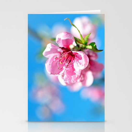 Float... Stationery Cards