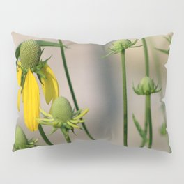 Mexican Hat Wildflowers in Horicon Marsh Pillow Sham