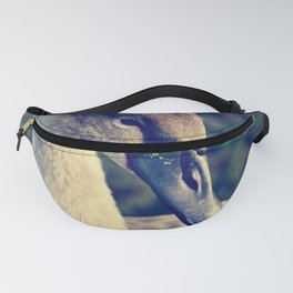 the youngster Fanny Pack
