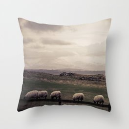 Sheep Grazing Jura Snow Throw Pillow