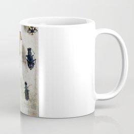 Untitled Specimen Coffee Mug