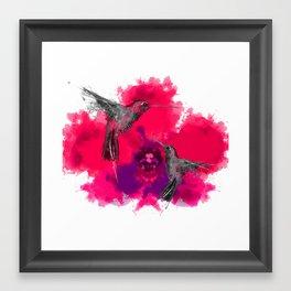 Pink hum orchid explosion  Framed Art Print