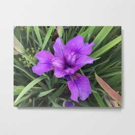 Flower I Metal Print
