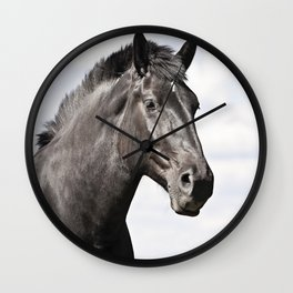 Black Horse Photograph in Color Wall Clock