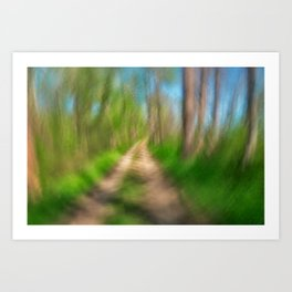 Spinning Sycamore Trail Art Print