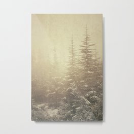 """Waiting for you...."" Mistery forest. Metal Print"
