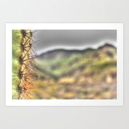The Wise Arizona Cactus Art Print
