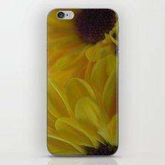 Summer Sun iPhone & iPod Skin
