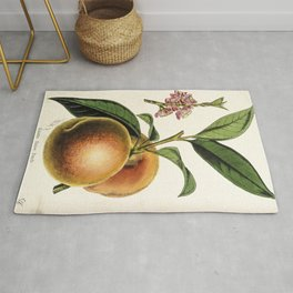 A peach plant - vintage illustration Rug
