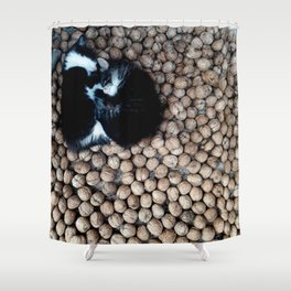 Two little kitties on some nuts Shower Curtain