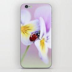Ladybird... iPhone & iPod Skin