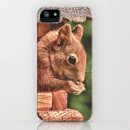 Foraging Squirrel in Little House iPhone Case