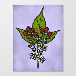 Raspberry Bloom Canvas Print