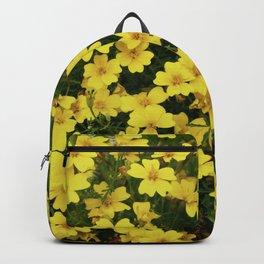 YELLow Backpack