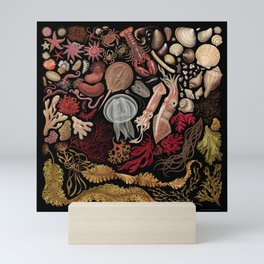 Intertidal Life of the North Atlantic (without species list) Mini Art Print