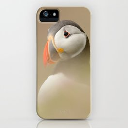 Portrait of Puffin iPhone Case