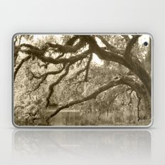 WaterOak Laptop & iPad Skin