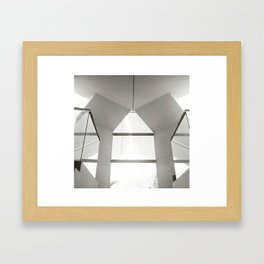 Symmetry #2 Framed Art Print