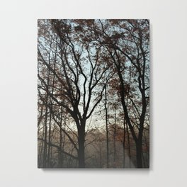 Tree Fingers Metal Print