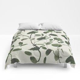 Hoya Carnosa / Porcelainflower Comforters